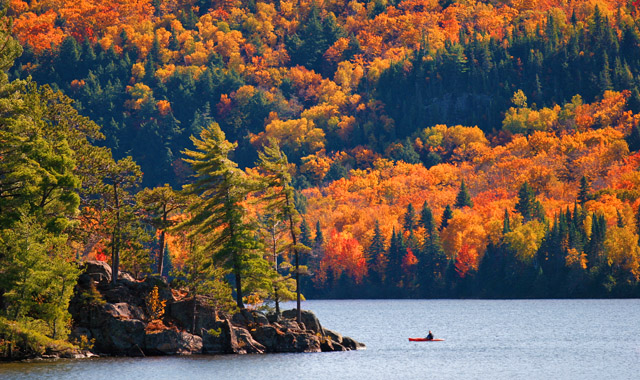 Herbstlandschaft am Wasser
