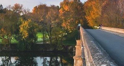 Brücke und Herbstblätter