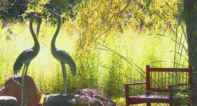 Jardin 'Rideau Woodlands Ramble' près de Burritts Rapids