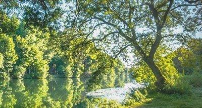 Sonniger Morgen auf der Charente